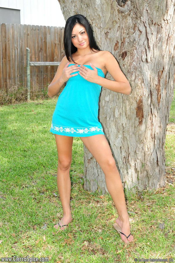 Cierra Spice Blue Dress