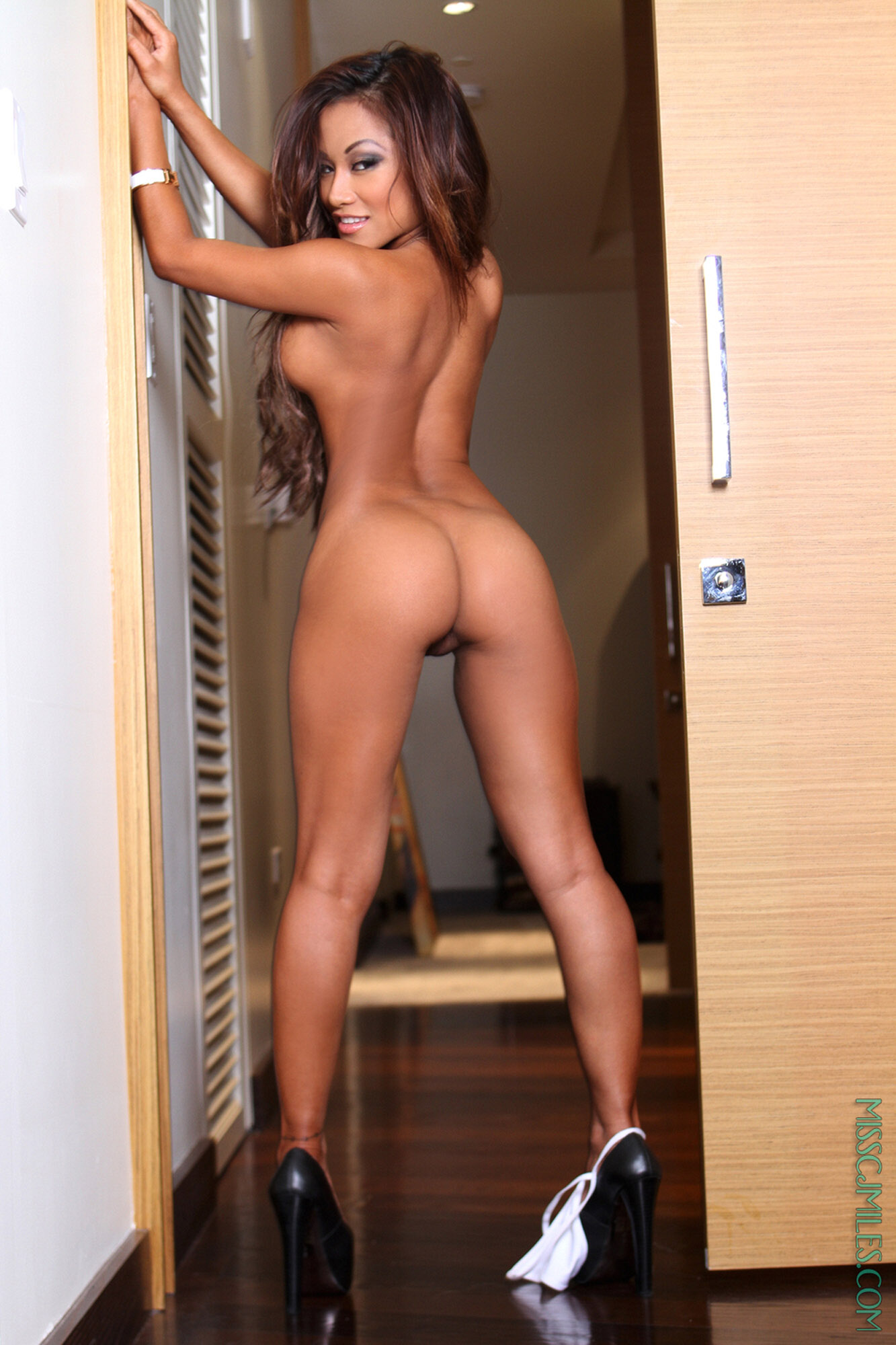 real wwe divas nude